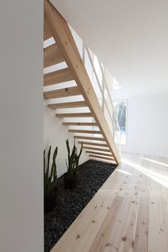 MAISON UNIFAMILIALE SAINT-SAUVEUR — DKA Architectes Saint Sauveur, Forest House, Montpellier, Habitats, House Plans, Sweet Home, Stairs, Farmhouse, Cottage