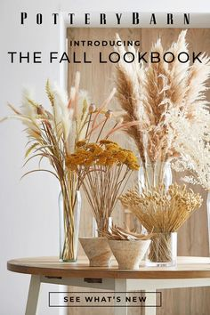 Our Fall Look Book is here! From woven textures to mineral tones, see what we're loving most this season: perfect for your home refresh.