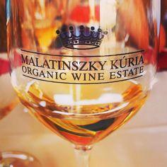 Malatinszky Kuria Organic Wine Estate - Siklos, Hungary
