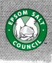 Add Epsom Salt to your garden for more blooms & higher yields... but keep it away from the sage.