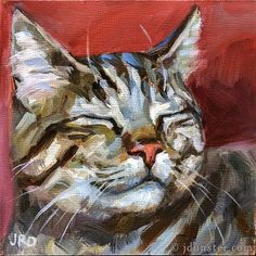 "Daily Paintworks - ""Content Tabby"" - Original Fine Art for Sale - © J. Dunster"