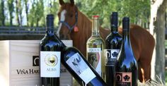 Maipo Valley Premium Tour - Winerist