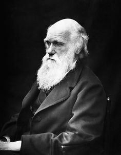 Charles Darwin (1809-1882)  Darwin shook the world with his theory of evolution causing many to rethink everything they knew, including the origins of mankind. Darwin's theory would grow as accepted fact in the realm of science and caused major turmoil with those of religious faith. The voyage of the Beagle to the Galapagos islands is now legend, and Darwin's ideas now form the backbone of all biology.
