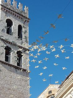 The peace doves at Assisi, province of Perugia , Umbria region, Italy