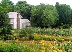 I would live in this farm house today.