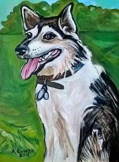 Husky, Dogs, Animals, Animales, Animaux, Animal Memes, Husky Dog, Animal, Pet Dogs