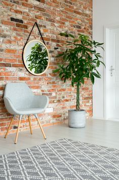 Aranżacja wykonana za pomocą cegły CLASSIC PREMIUM Tall Plants, Potted Plants, Grey Armchair, Bedroom Table, Stylish Chairs, Metal Shelves, Cozy Room, Cozy Blankets, Corridor