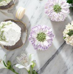 정규반 4주차 여름맞이 Students work #RKFA#RepublicofKoreaFlowercakeAssociation #flowercake#theflowercompany #koreabuttercreamcake#bungakpop#buttercream . . #BungaKue#鲜花蛋糕#jakartacake#jakartabaking#เค้ก#flowerstagram#ดอกไม้#wiltoncakes#bakingclass#cakedesign#cakeshop#theflowercompany#instacake#koreanbuttercream#koreanflowercake#플라워케이크#kursuskue#플라워케익#flowercake#Bangkokcake#CakesThailand#fukuokacake#福岡ケーキ#大阪ケーキ#東京ケーキ #CakesThailand#fukuokacake#福岡ケーキ