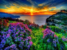 I find it imperative that I see the beauty in things, otherwise my day would be unimaginatively sad~ Beautiful Sunset, Beautiful Images, Beside Still Waters, Sunset Sea, Nature Artwork, Sunset Wallpaper, Great Shots, Beautiful Landscapes, Places To Visit