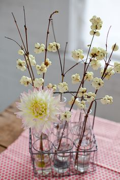Yet another example of the sort of flower arrangement I want for the table...