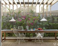 Jack, a Brazilian terrier, is at home in one of the garden rooms of this Isay Weinfeld–designed Brazilian villa, where vintage iron-wire chairs are pulled up to a florist's worktable   archdigest.com