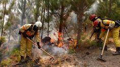 Ayuda internacional para combatir el fuego en Chile: Bomberos portugueses, colombianos, argentinos, españoles y brasileños extinguen juntos…