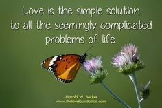 Love is the simple solution to all the seemingly complicated problems of life.-Harold W. Becker #UnconditionalLove butterfly