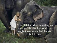 Wise words said by a wise man who is rightly internationally respected Great Quotes, Quotes To Live By, Me Quotes, Inspirational Quotes, Qoutes, Motivational Sayings, Uplifting Quotes, Dali Lama Quotes, Dalai Lama Quotes Love