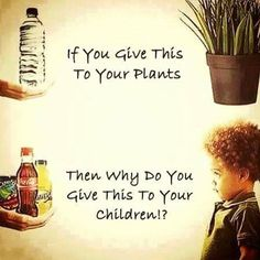 You want your plant to grow and be healthy. Don't you want that for your child? Skip the sugary drinks!