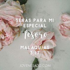 RUT/ Semana 1 Martes    #JovenesADG #RUT #ComunidadADG #EstudiosBiblicosparaJovenes #Dios #MujerdeFe #AmaaDiosGrandemente