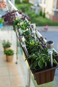 enjoliver votre espace balcon avec des plantes