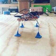Shitty machines! #fablab #fablabmaya #diy #arduino #bug #servomotors #degree #leg #nolaser #homemade #sg90 by fablab_maya