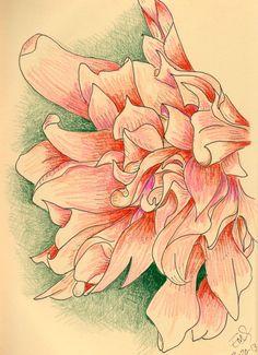 Flower - esolomon art