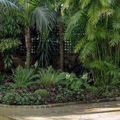 Simple, soft planting scheme in this Paddington courtyard, a collaboration with @luigirosselliarchitects #citygardens #innercitycourtyard #shadeplanting#secretgarden #secretgardenlandscapes