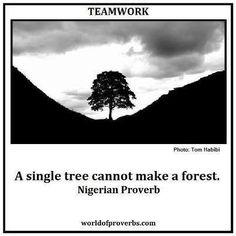 """""""Α single tree cannot make a forest"""". Team spirit is needed!"""