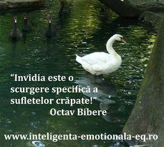 """""""Invidia este o scurgere specifica a sufletelor crapate"""" Octav Bibere"""