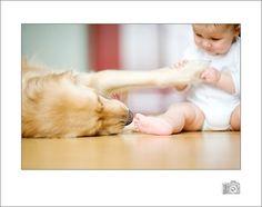 baby and dog photo