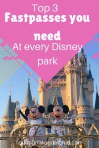 The top 3 fastpasses you need for every park on your Disney vacation. Walt Disney World Rides, Disney World Tickets, Disney World Florida, Disney Parks, Disney Vacation Planning, Orlando Vacation, Disney World Planning, Disney Vacations, Disney Fast Pass
