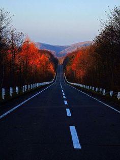 Autumn Road, Japan  photo via christine
