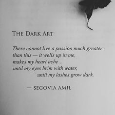 """The Dark Art"" written by Segovia Amil"