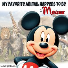 My favorite animal happens to be a mouse.