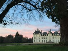 Loire Valley, Trip Advisor, Photos, Mansions, House Styles, Pictures, Photographs, Luxury Houses, Palaces