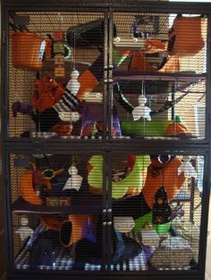 It's always fun to decorate for Halloween, so this year try decorating your rats' cage! It can be easy and inexpensive if you get your materials from thrift stores and dollar stores. There are lots of different Halloween decorations that can be used. Rat Cage Diy, Pet Rat Cages, Ferret Cage, Animal Room, Animal Pictures, Cute Pictures, Rat Cage Accessories, Rat Care, Dollar Stores