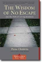 I read Chodron's books several times, believing wisdom eventually sinks through the layers.