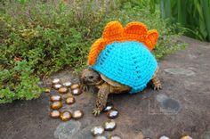 Stegosaurus tortoise cozy - made to order in any color. Sooo in love with this, amazing idea for free-roaming!