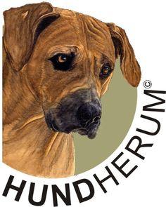 Logo für Andreas Wissenbach -Service rund um den Hund-