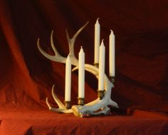 Counterbalanced ANTLER candelabra designers since Naturally shed whitetail and reindeer. Antique Brass Candle Holders, Game Of Thrones Halloween, Game Of Thrones Map, Got Party, Reindeer Antlers, White Tail, Long Winter, Candelabra, Party Planning