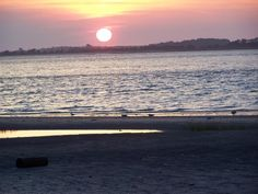 I want to live here some day! BEst beach ever is Edisto Island, South Carolina.