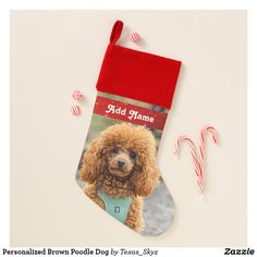 Personalized Brown Poodle Dog Christmas Stocking Christmas Animals, Christmas Dog, Christmas Card Holders, Christmas Cards, Pet Christmas Stockings, Santa Claus Is Coming To Town, Poodle, Pets, Brown