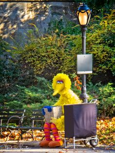 Big Bird in Central Park: I don't normally post this type of image but here is something you don't see everyday.  I was walking through Central Park and came across Big Bird sitting alone on a park bench. Jim HensonStreet PhotographyParkPeopleStreetNew York CityNorth AmericaUnited StatesCentral ParkCharacterPuppetStrangeStreet LampNew York StateStreet PerformerWorkingUnusualStreetscapeBig BirdSesame StreetProfessionsMuppetRoles