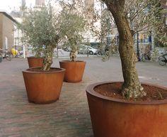 Corten Cones in Leiden