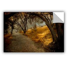 ArtWall Meander 5 Removable Wall Mural Size: