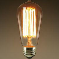 Long Filament - LED Antique Edison Bulbs | 1000Bulbs.com