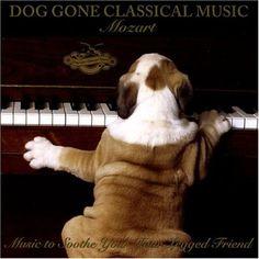 Ah, classical music... :)