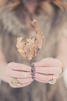 With Grateful Hands❥ Soft Autumn, Autumn Leaves, Oak Leaves, Autumn Fall, Winter, Peach Colors, Color Themes, Hold On, Autumn Fashion