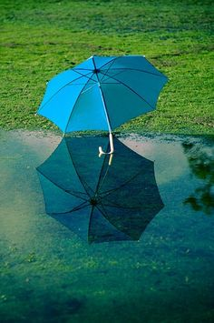c3fd8ccb38ecc 92 Best A Blue Umbrella images in 2013 | Blue umbrella, Rain art ...