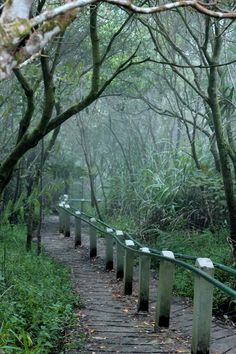 Fun hike: Mahawu mountain in Tomohon is a good choice for a fun hike with easy access to the peak. (Photo by Hanna Nabila)