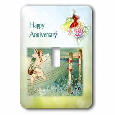3dRose Print of Victorian Happy Anniversary With Butterflies, 2 Plug Outlet Cover