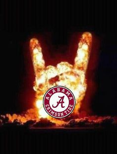 Roll Tide!!! Love this!!