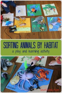 Turning a tough morning around by adding some learning to play. Easy, no prep, no materials activity! Sorting and classifying animals into their habitats.